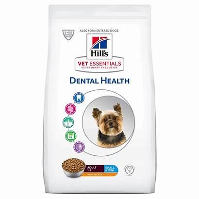 Adult Canine Dental Health Vet Vetessentials Hill