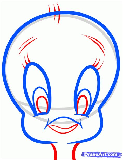 draw tweety easy step  step cartoon network