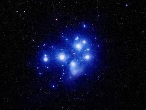 Carol R. Ward: Pleiades