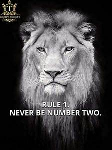 Best 25+ Horosc... Lion Sign Quotes