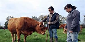 Aide De L état : agriculture le plan d 39 aide de l 39 tat prolong jusqu 39 fin 2017 ~ Medecine-chirurgie-esthetiques.com Avis de Voitures