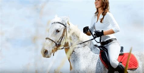 saddle withered pad horse horses