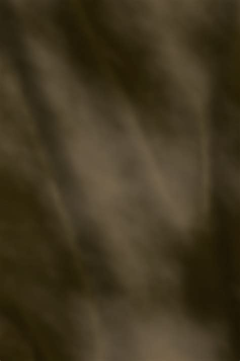 12241 professional business portrait background professional portrait background www imgkid the