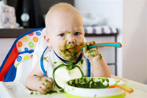 42 Baby Puree Ideas For Weaning Your Baby