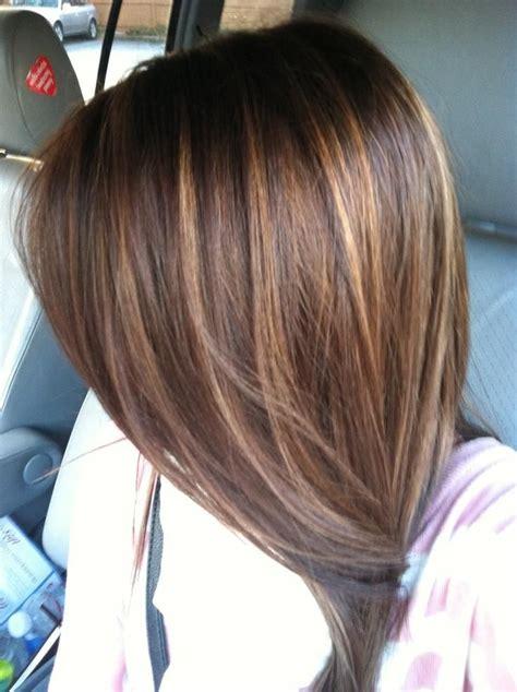 light brown hair with caramel highlights dark brown hair with caramel highlights hair pinterest