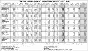 5 Best Printable Food Calorie Chart Printablee Com