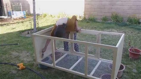quail hutches home made quail cage part 1