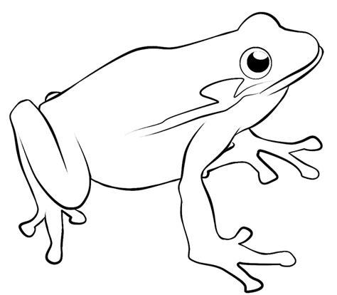 Frog Clipart Black And White Tree Frog Clip Black And White Clipart Panda Free