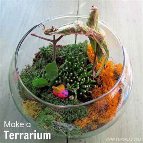 how yo make a terrarium make a terrarium tinkerlab