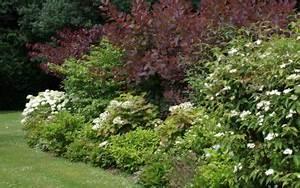 Quand Tailler Les Arbustes De Haies : travaux de jardinage la terre est un jardin ~ Dode.kayakingforconservation.com Idées de Décoration