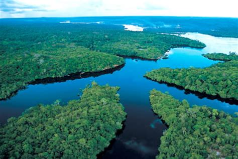 ... of the amazon river the river i am studying is the amazon river witch