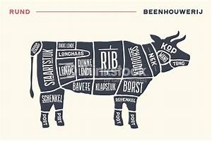 Meat Cuts Poster Butcher Diagram And Scheme Beef Stock