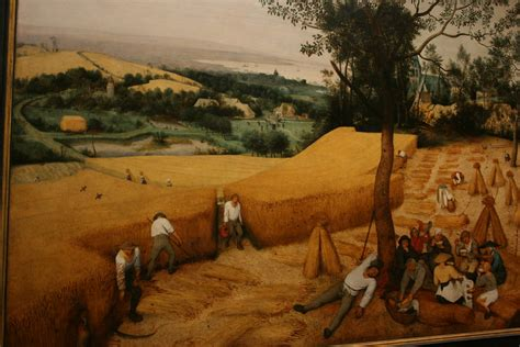 harvesters pieter bruegel  elder met museum