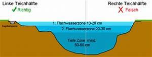 Pflanzen Für Teichumrandung : wasserzonen ~ Michelbontemps.com Haus und Dekorationen