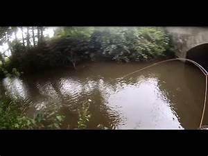Leboncoin En Bretagne : p che de la truite en rivi re bretagne go pro youtube ~ Medecine-chirurgie-esthetiques.com Avis de Voitures