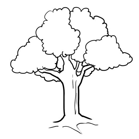 fall tree coloring pages getcoloringpagescom
