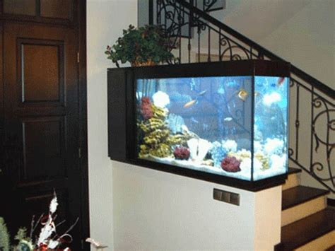 Home Aquarium Design Ideas by Thin And Narrow Can Work See Small Aquarium