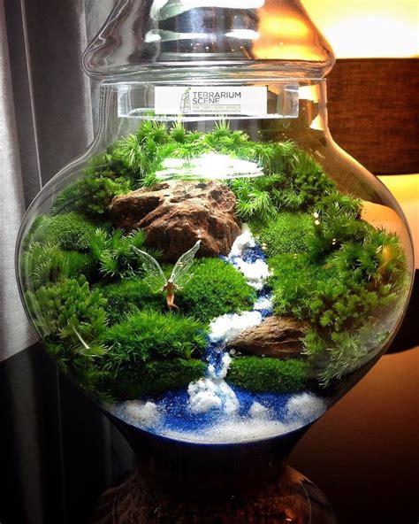 Mini Terrarium Glas by 25 Best Ideas About Terrarium On Mini