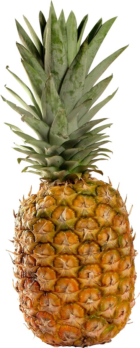 pineapple png images  pictures