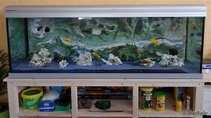 Aquarium Ohne Wasserwechsel : aquarium 375 liter cichliden becken ~ Eleganceandgraceweddings.com Haus und Dekorationen