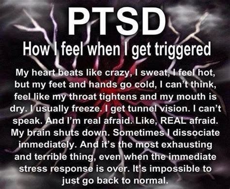 Ptsd  Inside A Brilliant Mind, Reviews And More