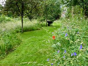 Garden Visit: A Wildflower Meadow at the Edge of an ...