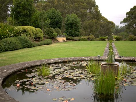 The New Formal Garden With Australian Plants Gardening