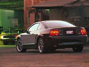 2001 Ford Mustang Bullitt Gt  Living The Legacy