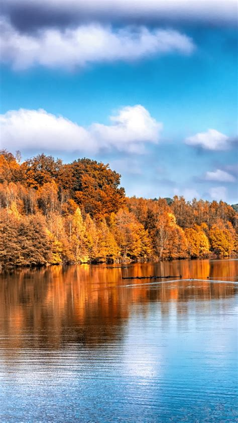 wallpaper autumn lake forest  nature