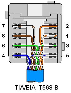 Terminating Wall Plates Wiring