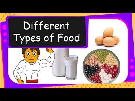 different types of cuisines in the science human food different types of food we eat