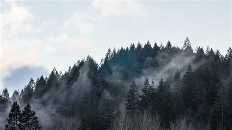 Fog Clouds Rolling Over Mountain Stock Footage Video (100