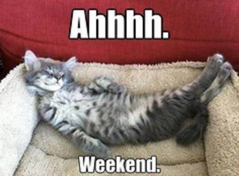 Happy Weekend Meme - ahh weekend funny cat meme