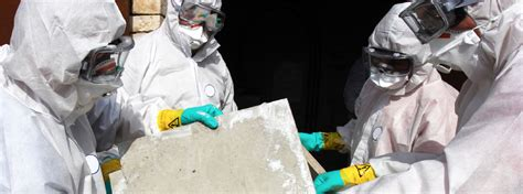 asbestos removal thermal insulation  roofing