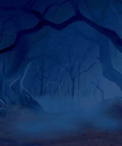 Forest Dark Night Foggy Frog Beast Beauty