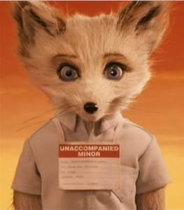Mr Fox : kristofferson fennec fox fantastic mr fox 2009 cinema tv pinterest fantastic fox ~ Eleganceandgraceweddings.com Haus und Dekorationen