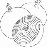 Coloring Onions Pages Onion Cp sketch template
