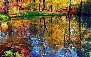 Beautiful, Nature, Water, Reflection, Hd, Wallpaper