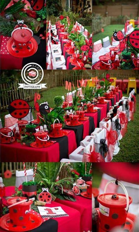 fan   stunning ladybug party ladybug party