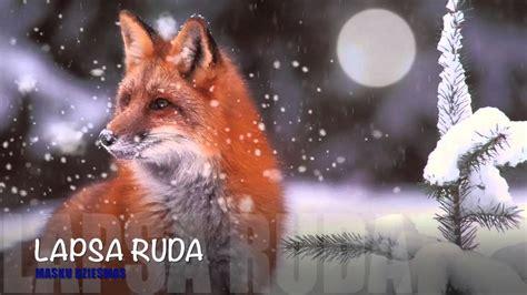 LAPSA RUDA - YouTube