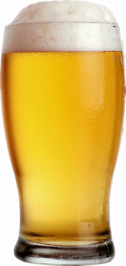 Beer Clipart Pint Glass Lager Transparent Cartoon