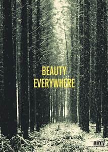 Beauty, Everywhere, U2013, Cyril, Tissot