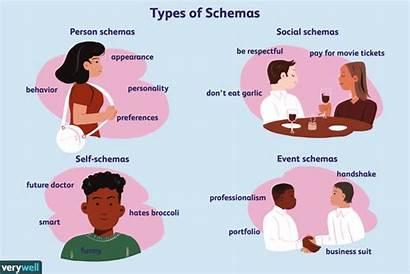 Schema Psychology Role Piaget Schemas Learning Process