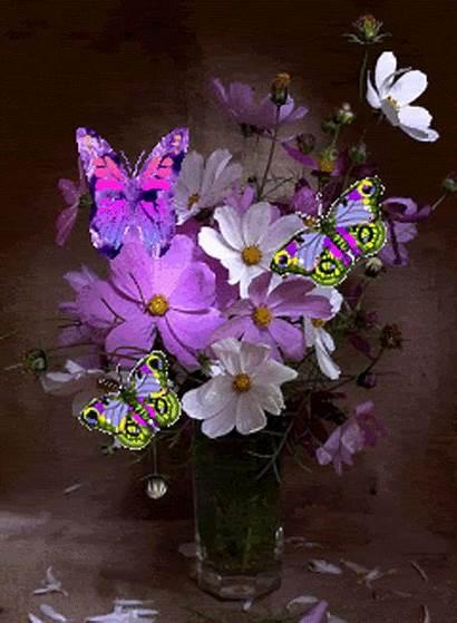Flowers Butterflies Animated Gifs Photobucket Purple Cosmos