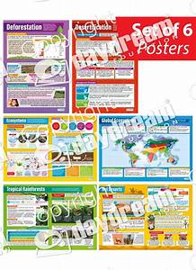 Ecosystems Posters