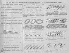 "Spencerian ""movement Drill Exercises""  Calligraphy & Hand Lettering  Pinterest Exercises"