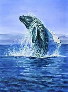 Breaching humpback whale by veracauwenberghs.deviantart ...