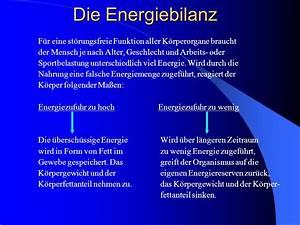 Körperfettanteil Berechnen Formel : stoffwechsel und ern hrung des sportlers ppt herunterladen ~ Themetempest.com Abrechnung