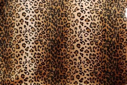 Leopard Fabric Fur Prints Wallpapers Faux Excellent
