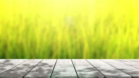table top  blur nature  background stock footage